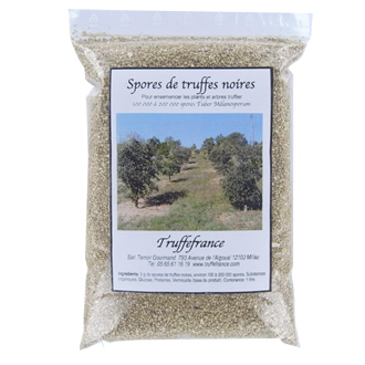 Augmentez le rendement des truffi res avec cet amendement de spores de truffes - Comment cuisiner les truffes noires ...