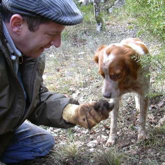 dresser son chien à la truffe